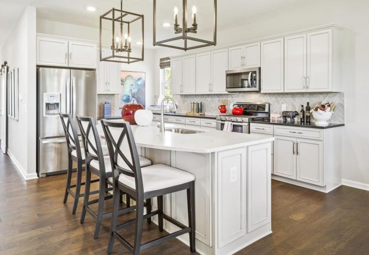 IRO-0004-00_Vanderburgh-kitchen3