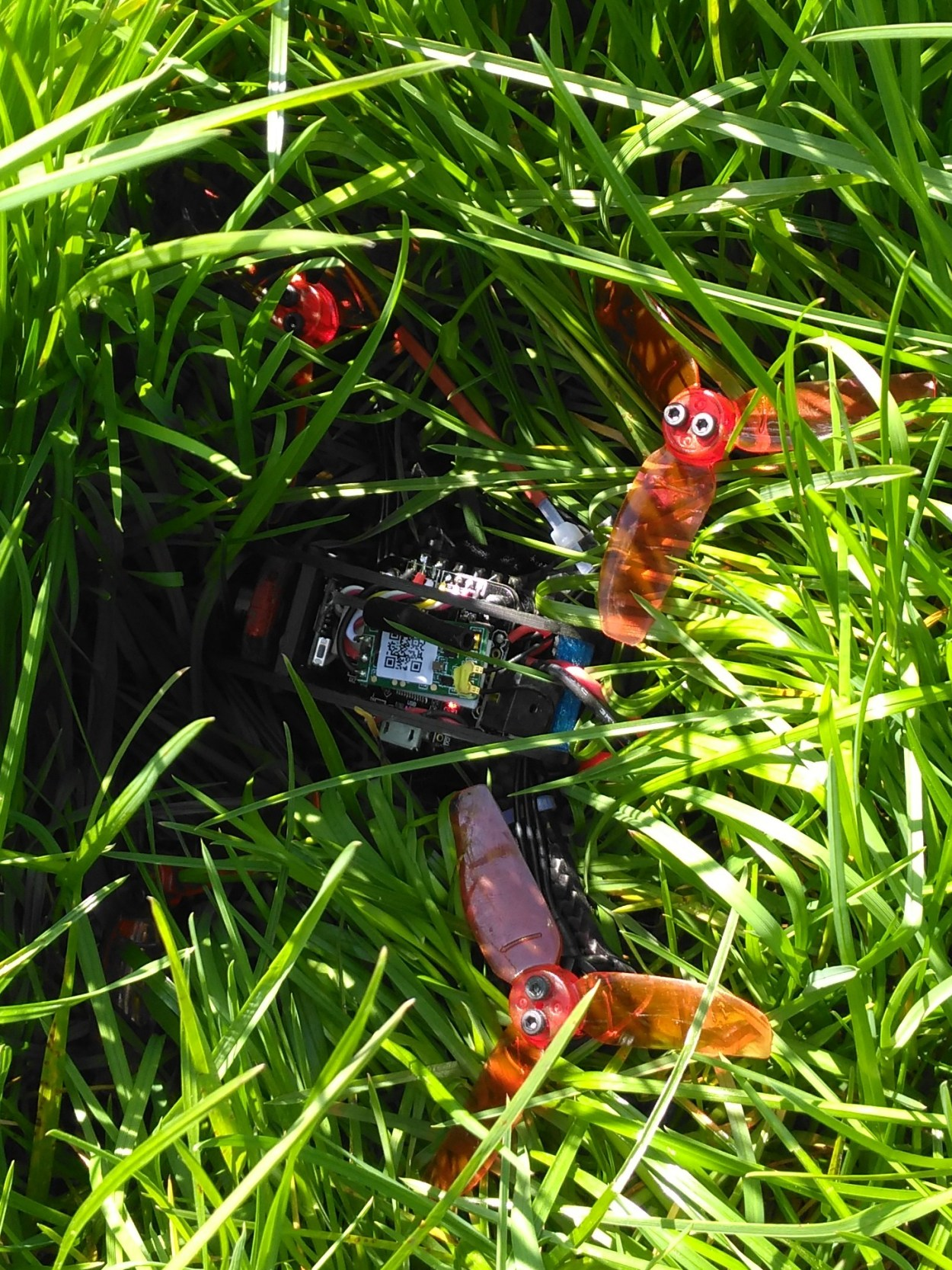 microquad_Lost_In_Grass_2.jpg