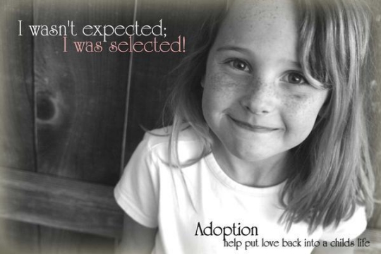 A meme promoting adoption (click for credit)
