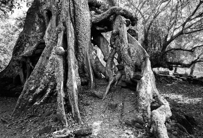 1209-AngkorWat-0397