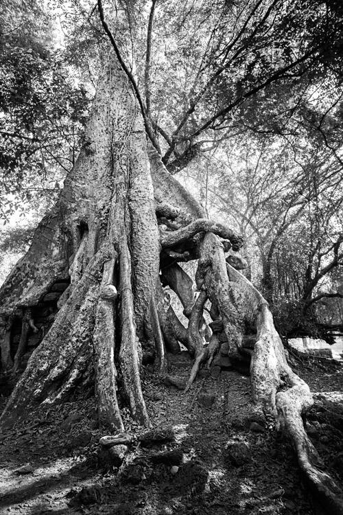 1209-AngkorWat-0399
