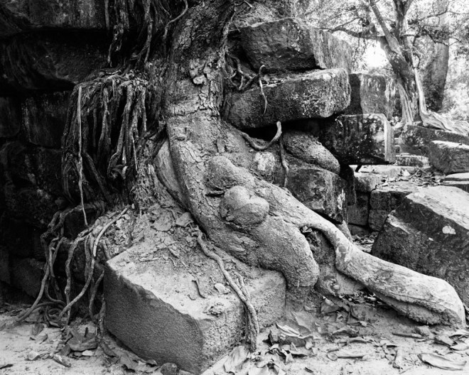 1209-AngkorWat-0430