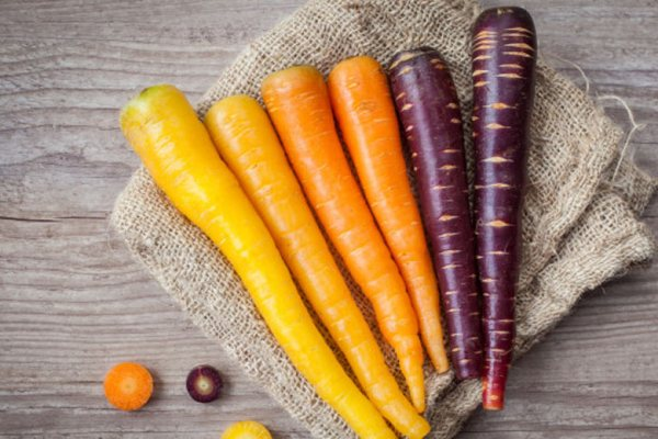 Sayuran Berwarna Ungu Wortel via freepik ala tim duniamasak.com