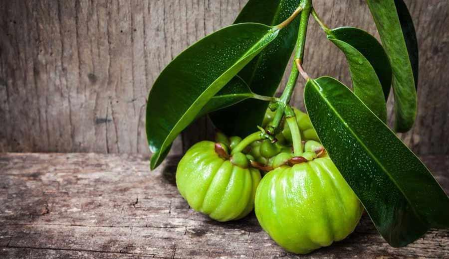 Macam-macam buah asam di Indonesia Asam gelugur via thedailymeal.com ala tim duniamasak.com