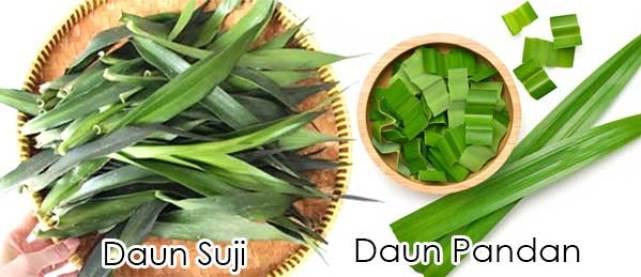 Daun suji dan daun pandan via shopee ala tim duniamasak.com