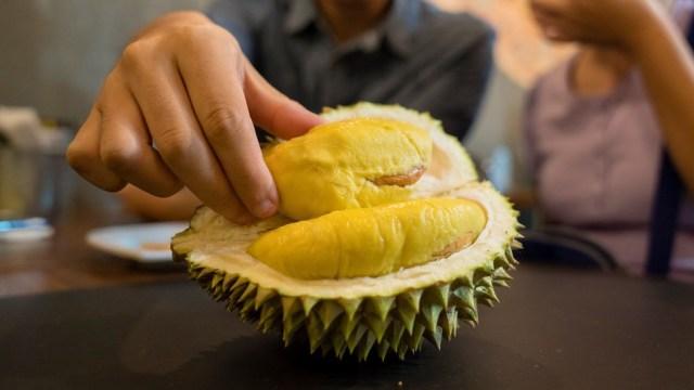 cara memilih durian via mashable.com