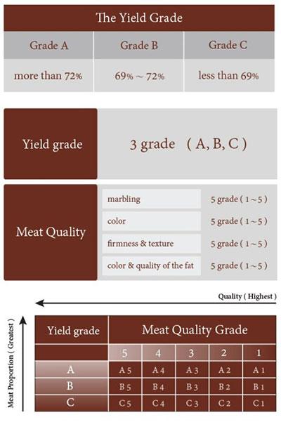Fakta unik wagyu via japanese-beef.com ala tim duniamasak