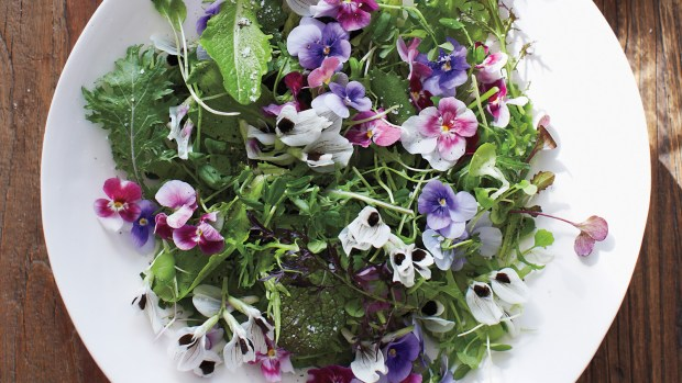 Edible Flower via www.marthastewart.com