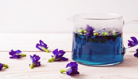 Manfaat bunga telang via freepik ala duniamasak