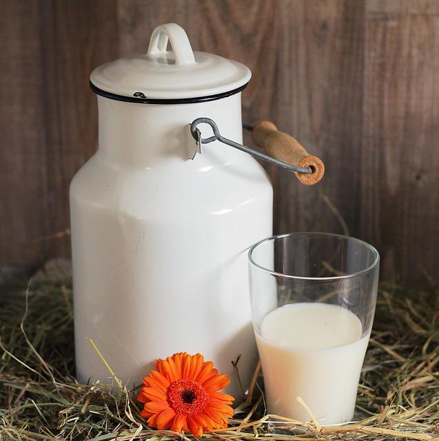 susu untuk kesehatan tulang via pixabay.com
