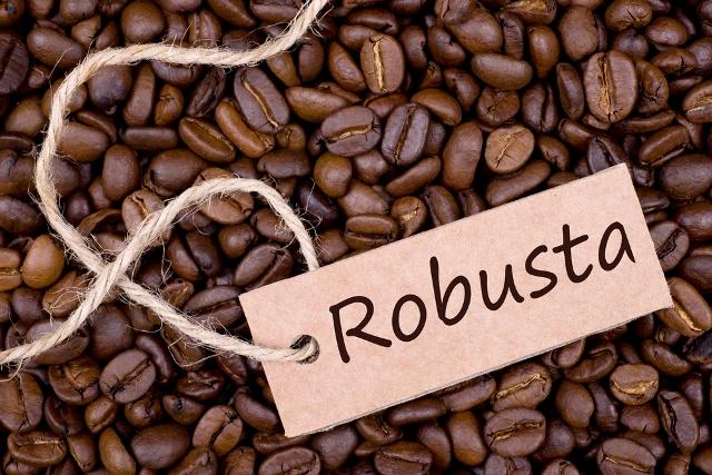 kopi robusta kopi terpahit ala duniamasak via google.com
