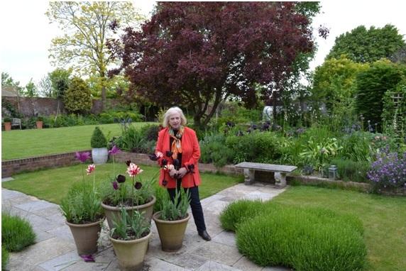 Garden Plants Dunster House