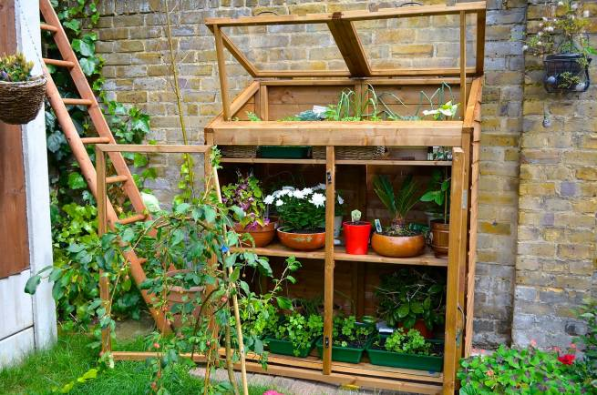 Greenhouse Storage Dunster House
