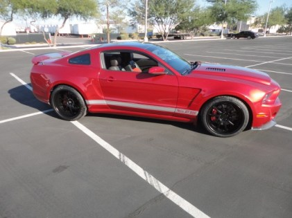 shelby_super_snake_red (4)