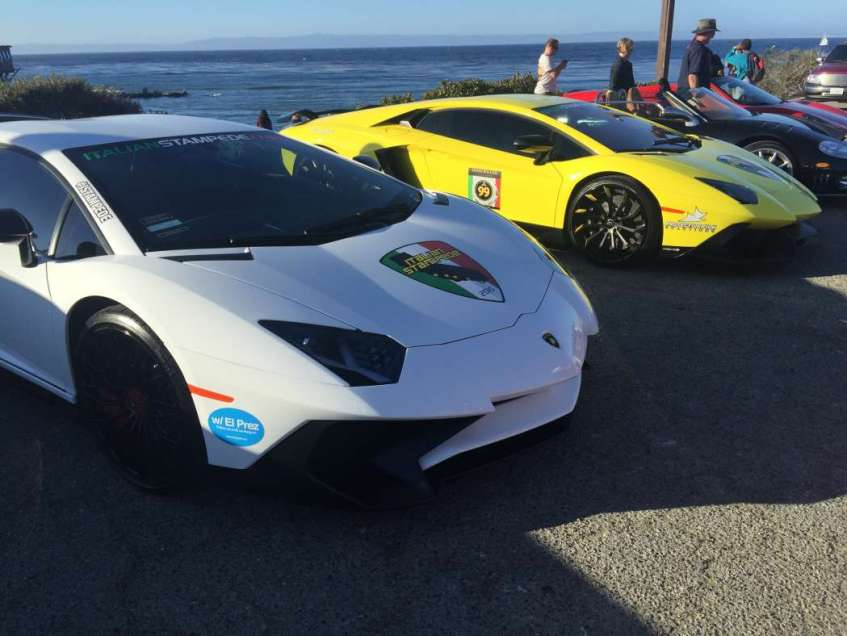 exotics on cannery row (16)