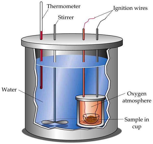 dutrition-bomb-calorimeter
