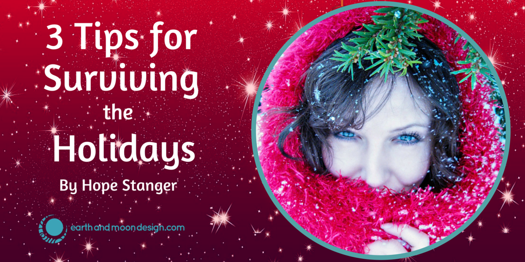 3 Tips Surviving the Holidays