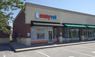 Is Buying a Veterinary Franchise a Good Idea?
