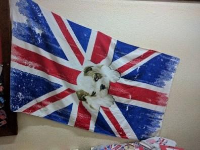 Dia da Língua Inglesa @ EB1/PE da Marinheira