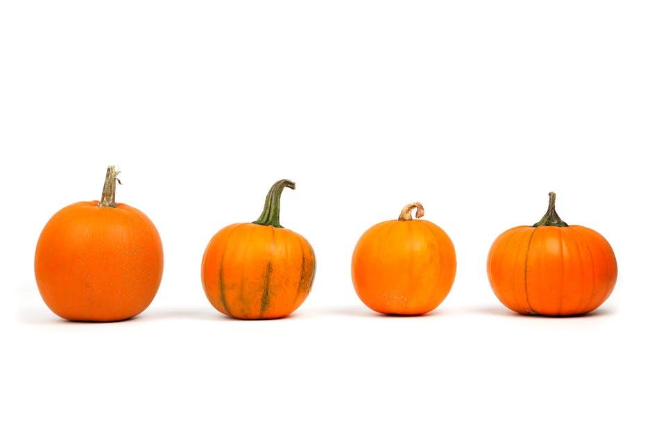 pumpkins fall food recipes