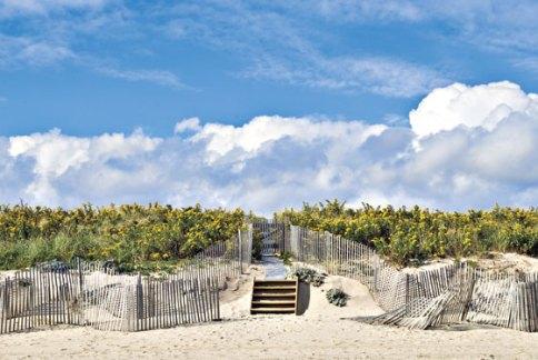 Hamptons EBOOST healthy energy drink mix