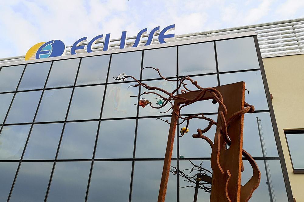 L'albero Vediamo Oltre all'ingresso della sede ECLISSE. Opera di V. Moro