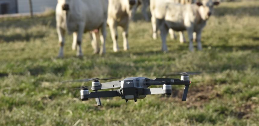 L'agriculture : un nouveau terrain d'étude pour l'EM Normandie
