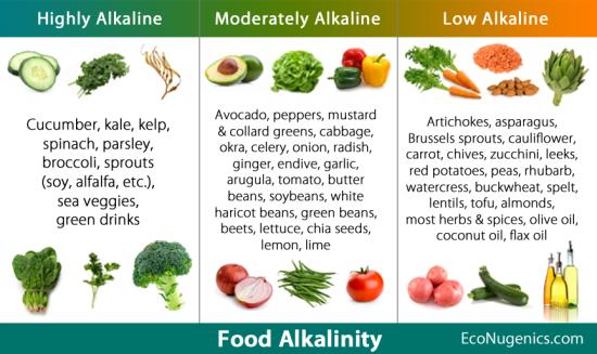 Food Alkalinity