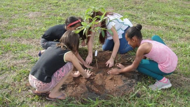 Alunos da rede pública municipal realizaram o plantio de árvore.