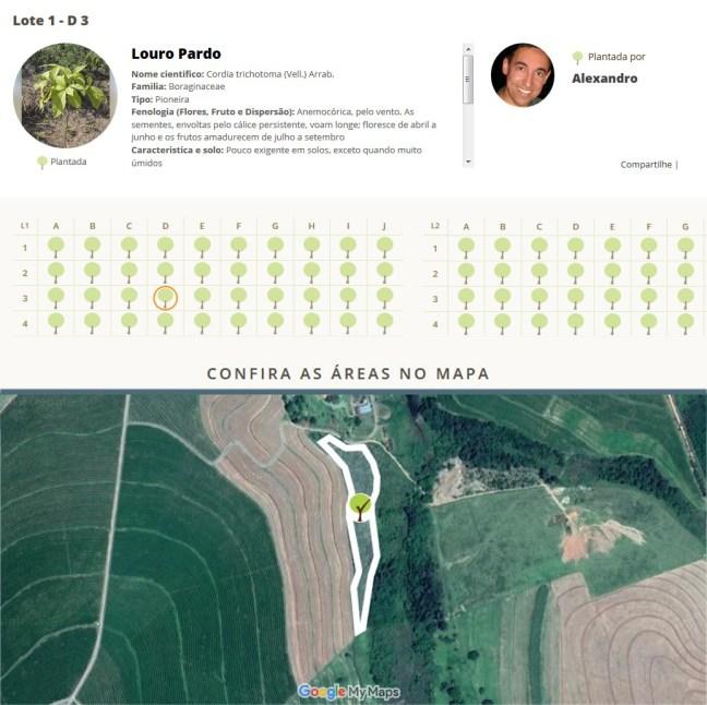 Arte mostra mapa com coordenadas e informações da campanha plante sua árvore