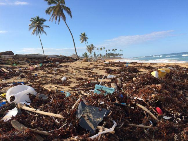 Foto mostra uma praia cheia de lixo