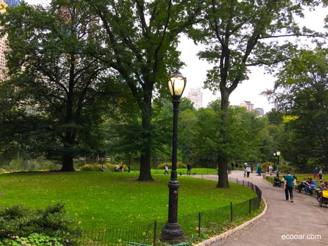 Foto mostra rua dentro do Central Park, com gramado, árvores e um poste de luz