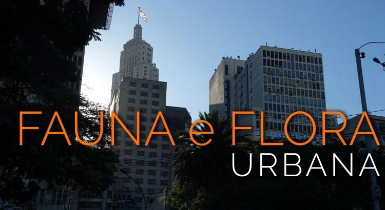 Foto mostra prédios de São Paulo, com árvores e folhagens