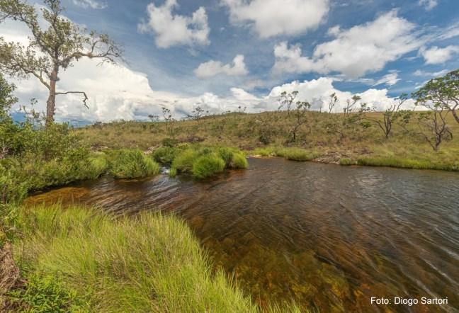 Foto mostra nascentes no Parque Nacional da Serra da Canastra, área do Cerrado brasileiro