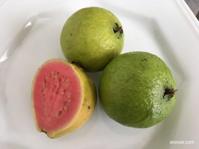 Foto mostra uma goiaba cortada ao meio e duas inteiras em um prato branco