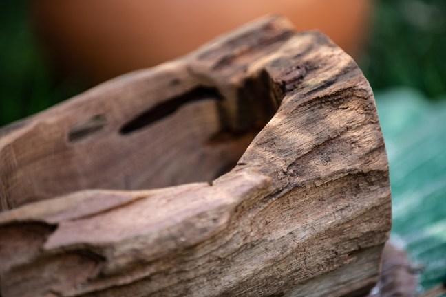 Foto mostra pedaço de madeira que será transformado em vaso pela Multiflora (Foto: Joelson Maia)
