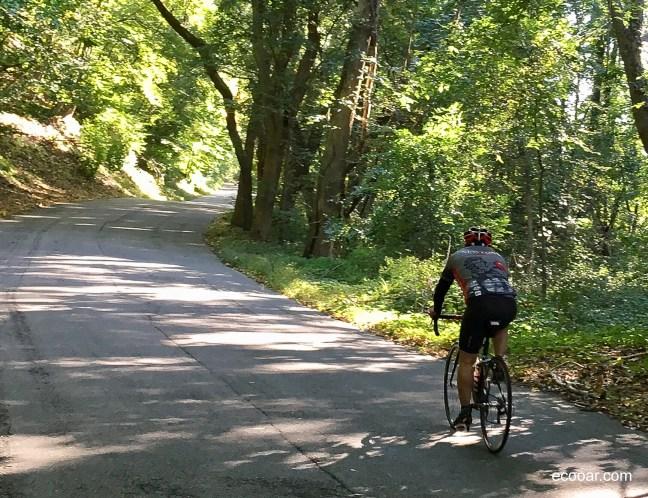 Foto mostra pessoa andando de bicicleta em meio a mata