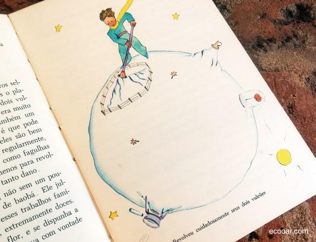 Imagem mostra livro Pequeno Príncipe em sua Terra
