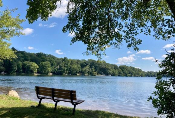 Foto mostra um lago, um banco e árvores ao fundo