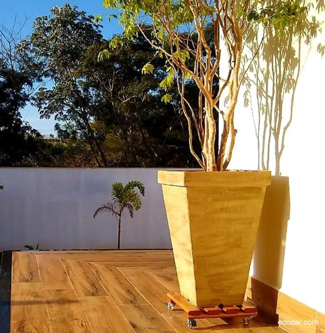 Foto mostra vaso com árvore dentro e ao fundo muro e atrás árvores maiores