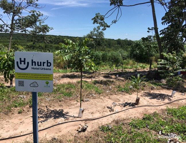 Foto mostra área de reflorestamento com placa com informações sobre a empresa HURB
