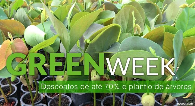Foto mostra mudas de Jatoba da Green Week