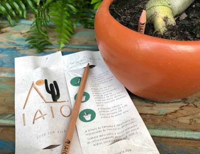 Foto mostra lápis semente entregue pela IAIO