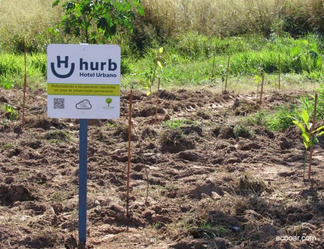 Foto mostra placa da área de reflorestamento Hurb