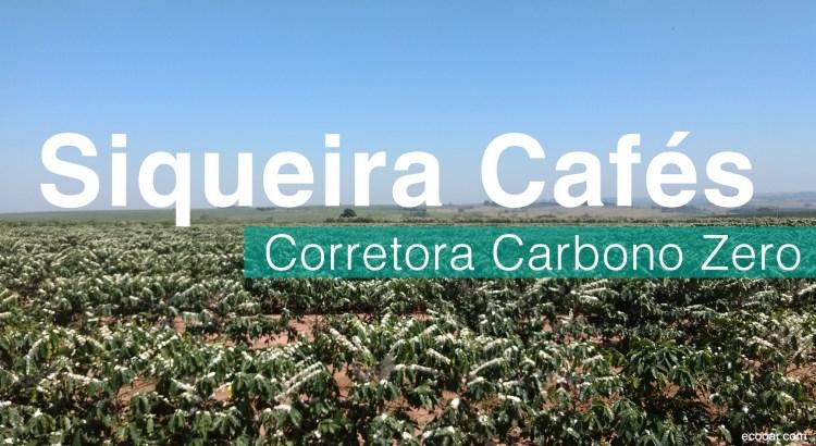 Foto mostra plantação de café com o título iqueira Cafés