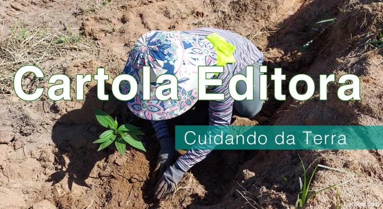 Foto mostra mulher plantando um árvore
