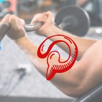 Social Media Marketing for Certified Personal Trainers