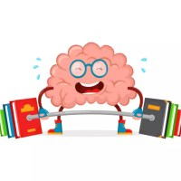 التركيز أثناء المذاكرة: تريد التركيز لفترة أطول؟ ركز لفترات أقصر!