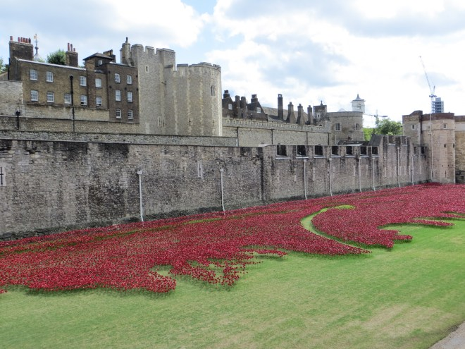 Poppies begin to surround the Tower of London in August 2014. Photograph by Caryl-Sue, National Geographic