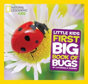 Book - First Big Book of Bugs